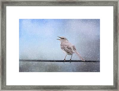Mockingbird In The Snow Framed Print by Jai Johnson