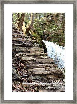 Mohawk Falls Steps Framed Print by Patti Whitten