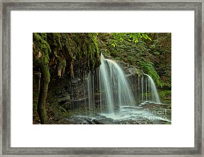 Mohawk Streams And Roots Framed Print by Adam Jewell
