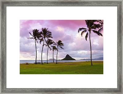 Mokolii Palms Framed Print by Sean Davey