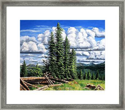 Molas Pass Area Framed Print by Timithy L Gordon
