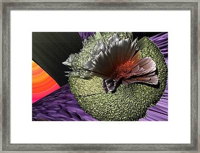 Molecular Explosion Framed Print by Camille Lopez