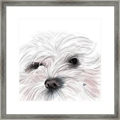 Mollie Framed Print by Maria Schaefers