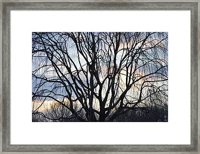 Moment Of Aging Framed Print by Sonali Gangane