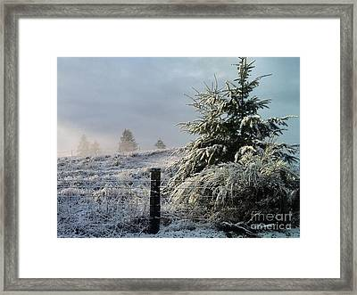 Moment Of Peace Framed Print by Rory Sagner