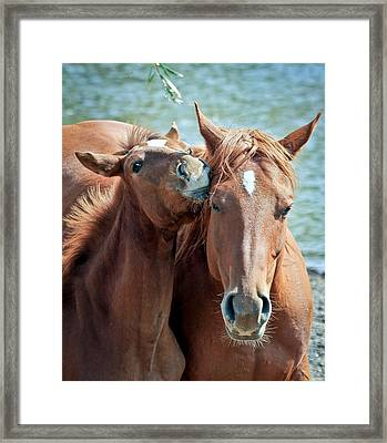 Mommy And Me Framed Print by Athena Mckinzie