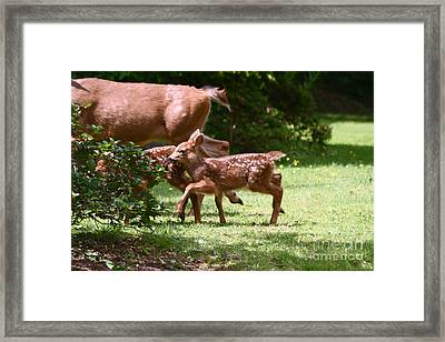 Mommy Is Here Time To Run Framed Print by Kym Backland