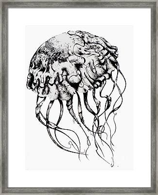 Mommy Jellyfish Framed Print by Penelope Fedor