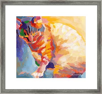 Mona Lisa's Rainbow Framed Print by Kimberly Santini