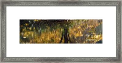 Monet At The Biltmore Framed Print by Anita Adams