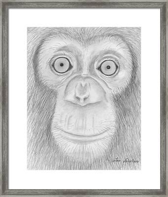 Monkey Portrait Framed Print by Jose Valeriano