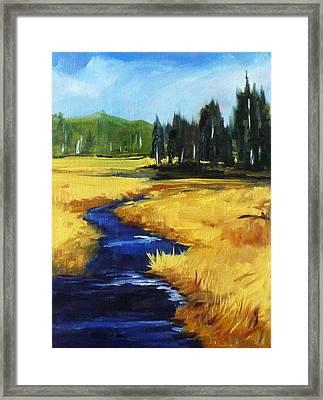 Montana Creek Framed Print by Nancy Merkle