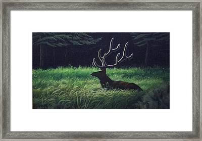 Montana Morning Framed Print by Dan Parsons