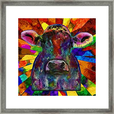 Moo Cow With Color Framed Print by Jack Zulli