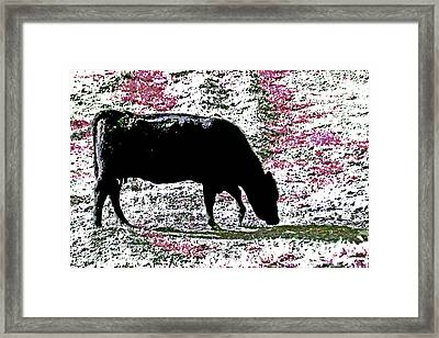Moo  Mower Framed Print by Joseph Coulombe