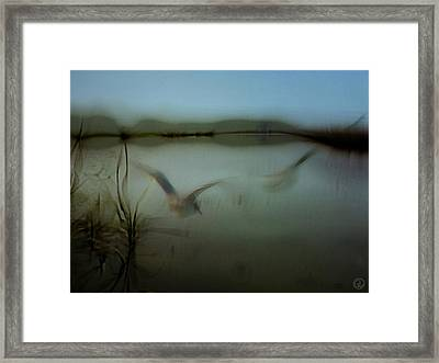 Moody Morning Framed Print by Gun Legler