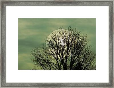 Moon Glow Framed Print by Patricia Strand