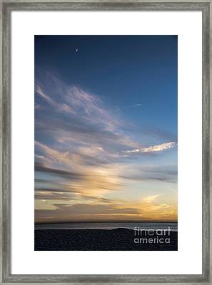 Moon Over Doheny Framed Print by Peggy Hughes