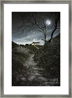 Moonlight Farm Framed Print by Carlos Caetano
