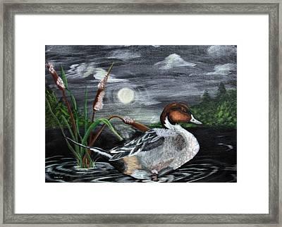 Moonlight Mallard Framed Print by Kathy J Snow