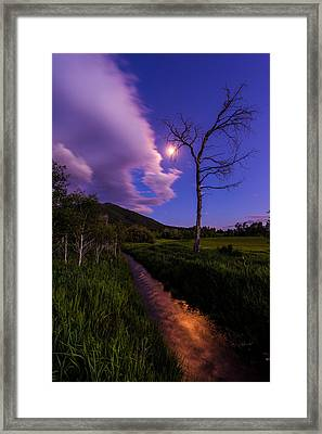 Moonlight Meadow Framed Print by Chad Dutson