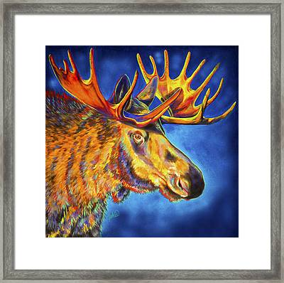Moose Blues Framed Print by Teshia Art