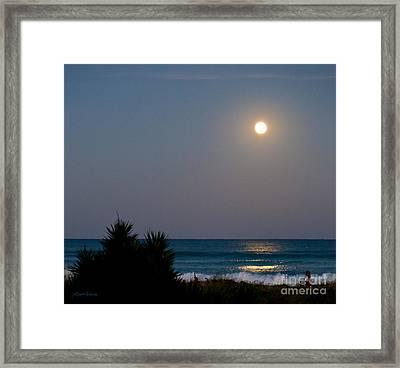 Moonlit Stroll Framed Print by Michelle Wiarda