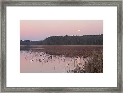 Moonrise Over Waterfowl Pond Framed Print by John Burk