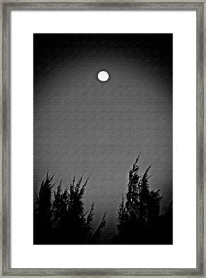 Moonshine Framed Print by Aimee L Maher Photography and Art Visit ALMGallerydotcom