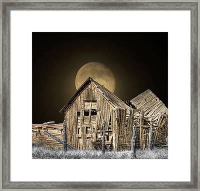 Moonshine Framed Print by Stellina Giannitsi