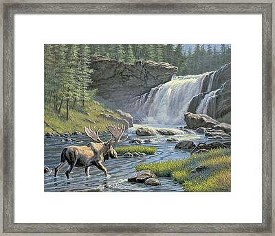 Moose Falls Framed Print by Paul Krapf