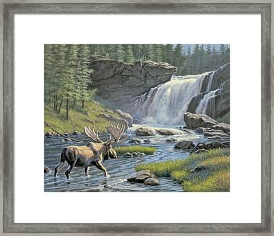 Moose Falls Framed Print by Paul Krapf