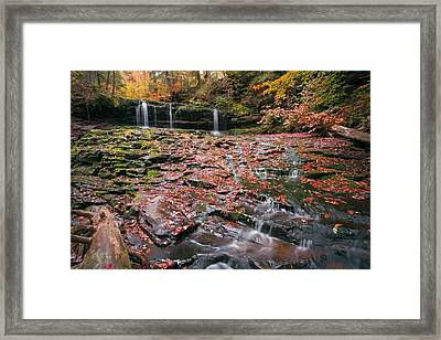 More Moss And Autumn Leaves Than Water Framed Print by Gene Walls