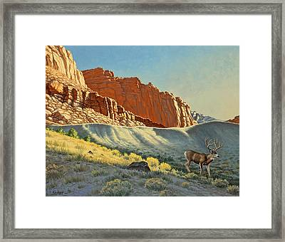 Morning At Capitol Reef Framed Print by Paul Krapf