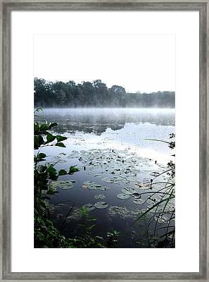Morning At Lake Framed Print by Willo Breisacher