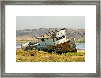 Morning At The Pt Reyes Framed Print by Bill Gallagher