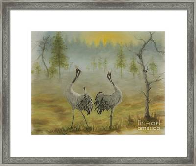 Morning Call Framed Print by Veikko Suikkanen