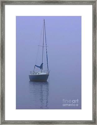 Morning Calm Framed Print by Karol Livote