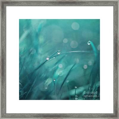 Morning Droplets Framed Print by Priska Wettstein
