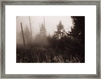 Morning Fog In The Smoky Mountains Framed Print by Dan Sproul