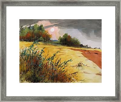 Morning Fragrance Framed Print by John  Williams
