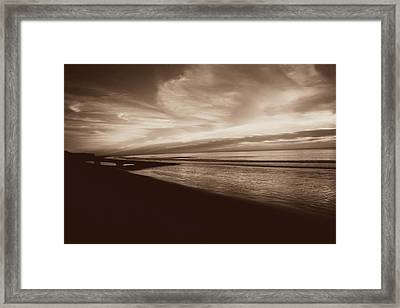 Morning Glory Framed Print by Debbie Howden