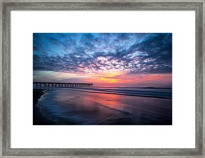 Morning Glory Framed Print by Walt  Baker