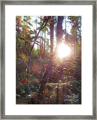 Morning Has Broken Framed Print by Martin Howard