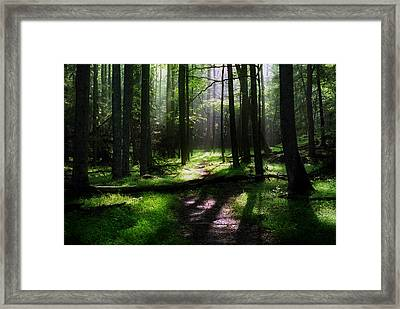 Morning In Cades Cove Framed Print by Greg and Chrystal Mimbs