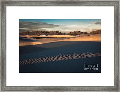 Morning Light Framed Print by Sherry Davis