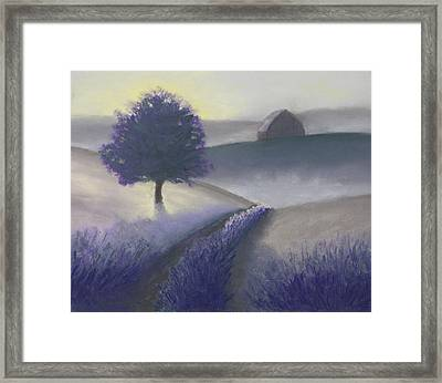 Morning Mist Framed Print by Garry McMichael