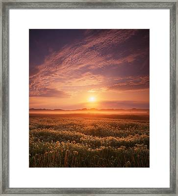 Morning On The Fen Framed Print by Ray Mathis