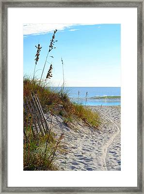 Morning Path To Beach Framed Print by James Fowler