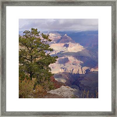 Soft Sunrise Over Isis Framed Print by Lisa  Spencer